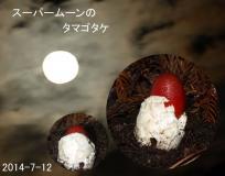 kinkinsama_1405196296000_0.jpg
