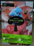 koutoku_1350651032000_DSCN8976.jpg