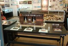 maikawa_1298124070000_DSC_0112.jpg