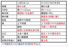 nakinoko_1259067411000_hyo.jpg